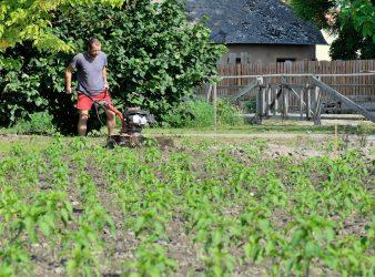 Vidéki munkák